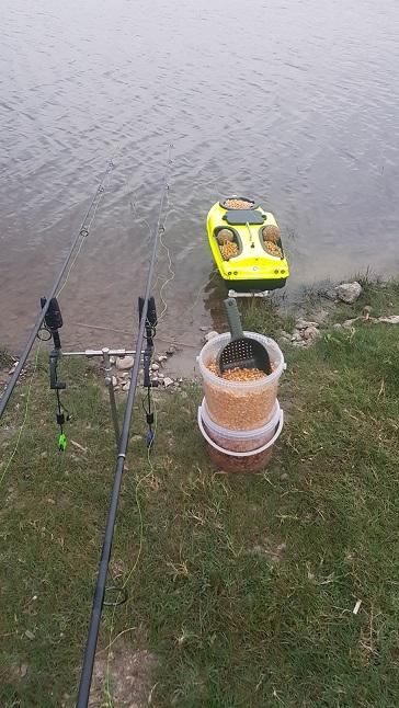 Anunturi - Pescuitul ro